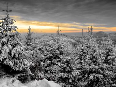 Zima na Pěnkavčím vrchu