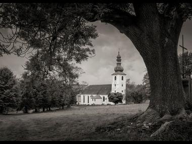 LIPOVÁ  |  HAISPACH 2012