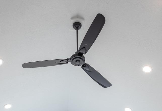 Main Living Fan