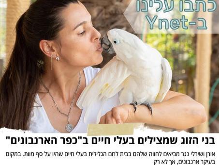 כתבו עלינו ב-Ynet