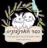לוגו צבעוני עם צל.png