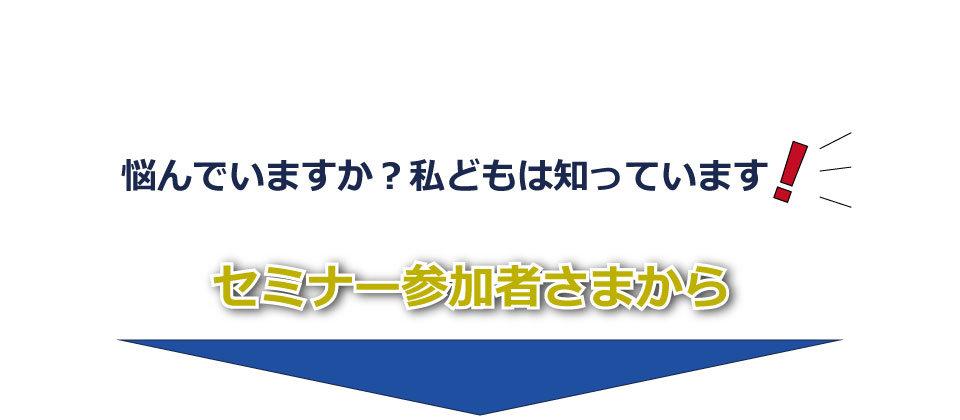 lp2_1.jpg
