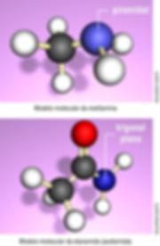 Estrutura e geometria da metilamina e etanamida