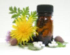 A Química das Plantas Medicinais