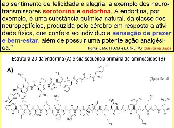 Neurotransmissores.jpg