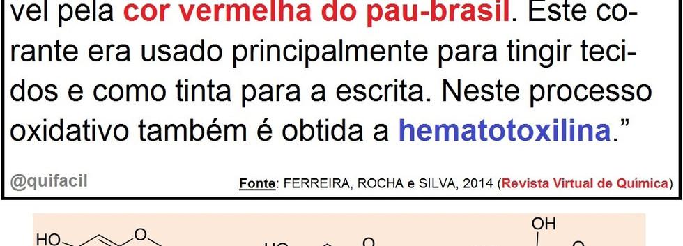 Pau-Brasil.jpg