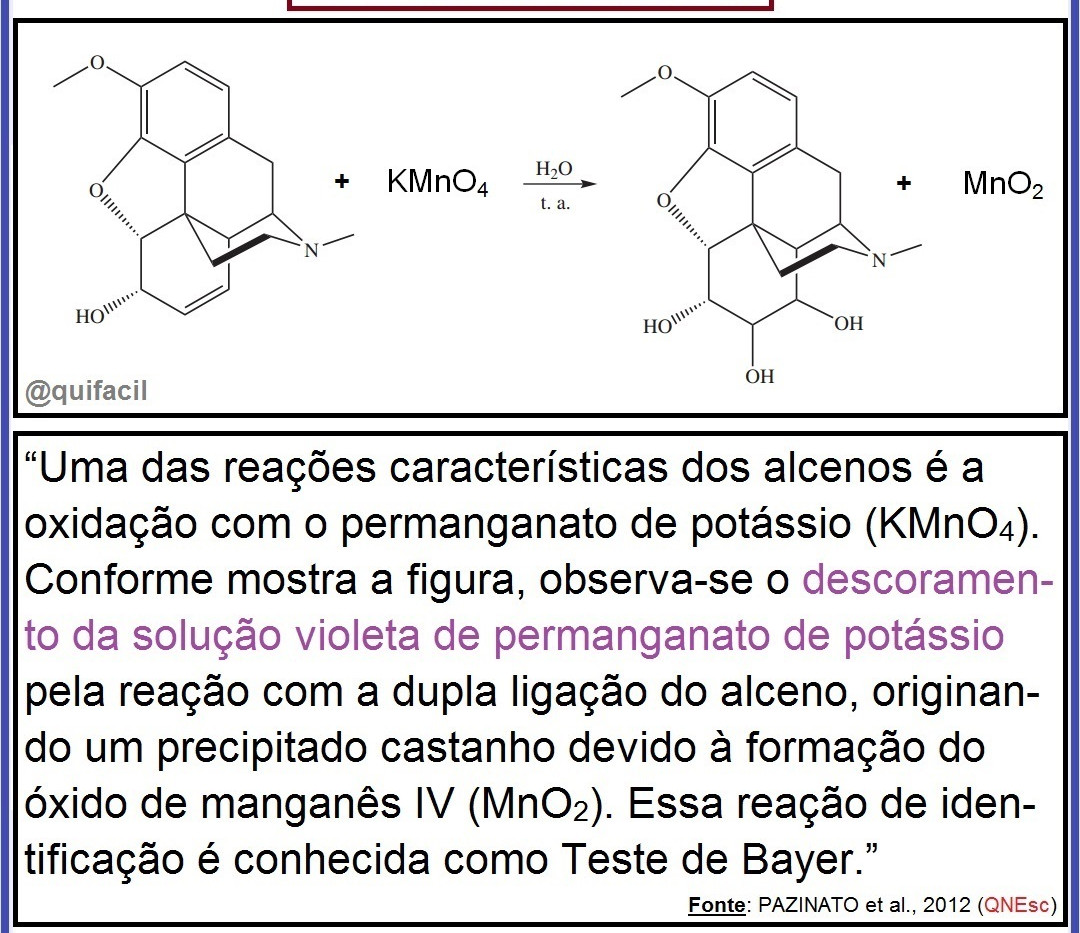 Teste de Bayer.jpg