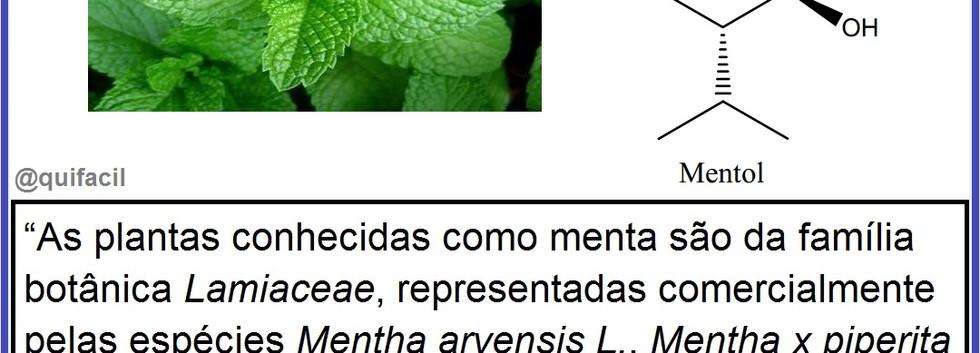 Óleos_Essenciais.jpg