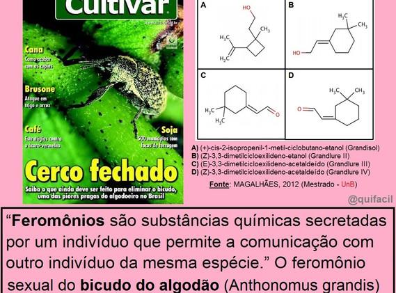 Feromônios_3.jpg