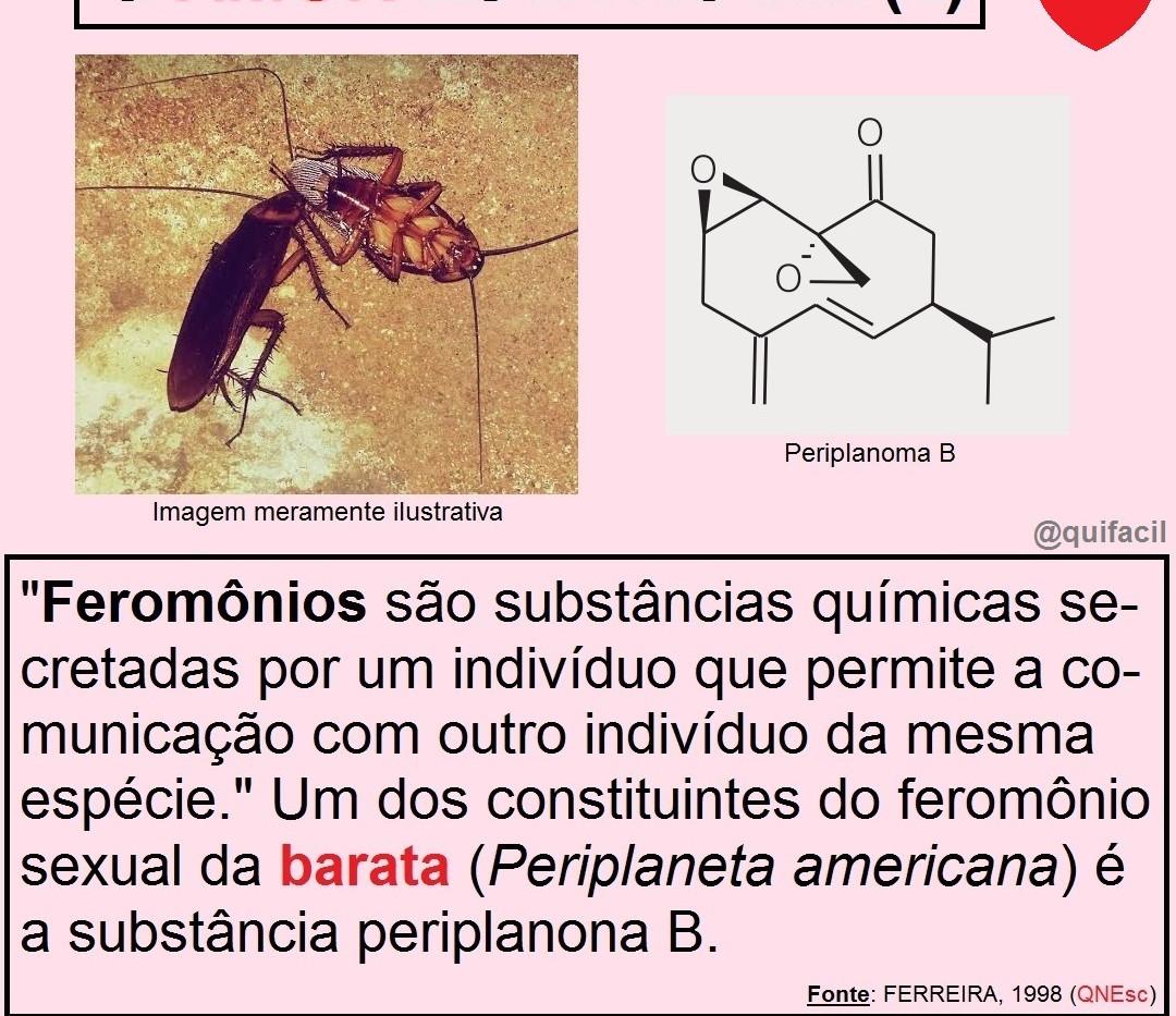 Feromônios_2.jpg
