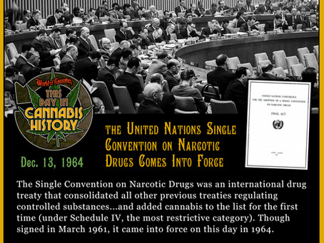 Dec. 13, 1964 - Single Convention on Narcotics Comes Into Force