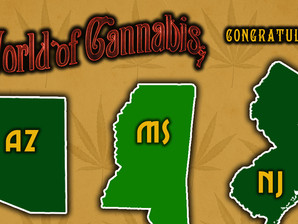MAKING HISTORY: Five States Vote to Legalize Cannabis