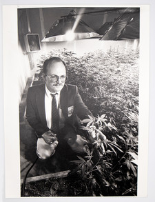 Seattle Police Officer Examines Plants