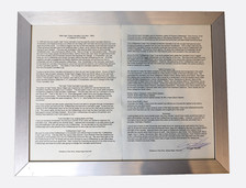 Catalyst For Change Essay - 1994 Cannabis Cup
