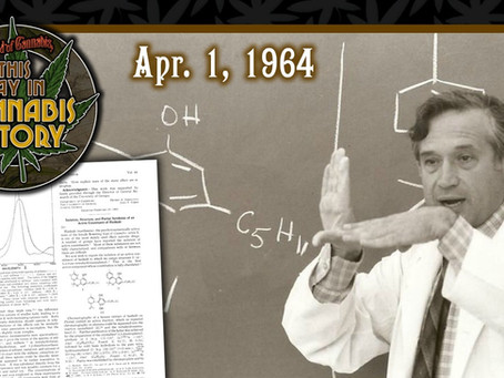 April 1, 1964 - Article Announcing the Discovery of THC First Published