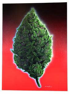 Bud Painting