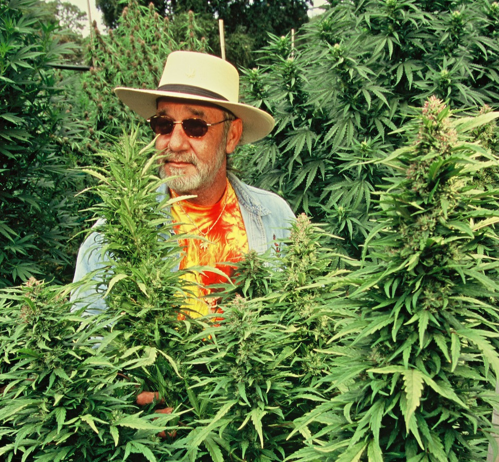 OG Eddy Lepp in his garden.