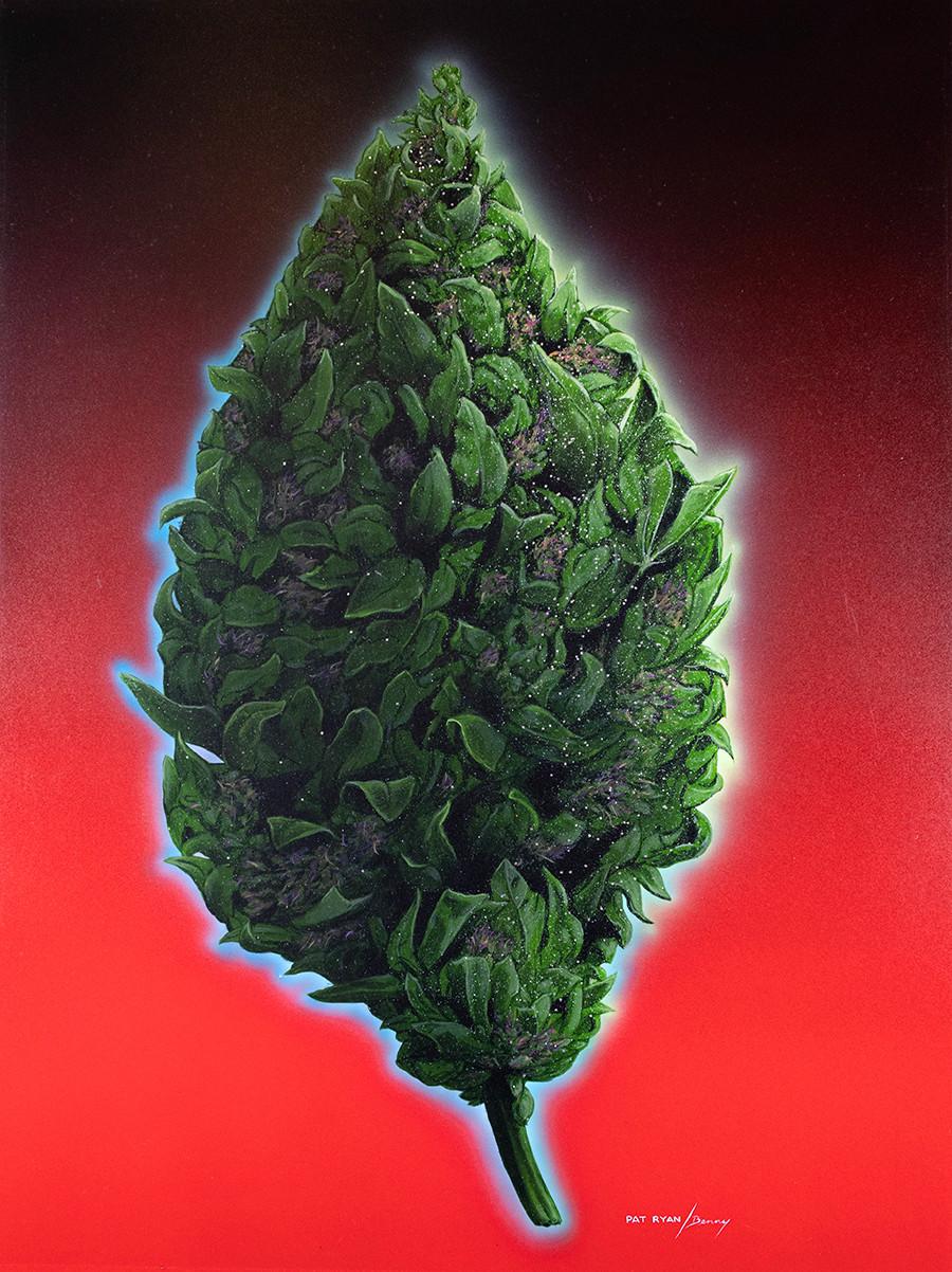 """""""Indoor Bud"""" original painting by Pat Ryan."""