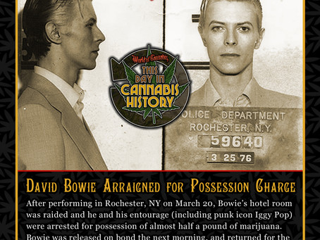 March 25, 1976 - David Bowie Arraigned for Possession Charge
