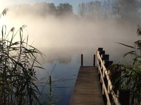 Morgen-Spaziergang mit der Positiven Psychologie