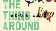 The thing around your neck de Chimamanda Ngozi Adichie