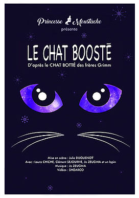 Affiche Chat Booste 2.jpg