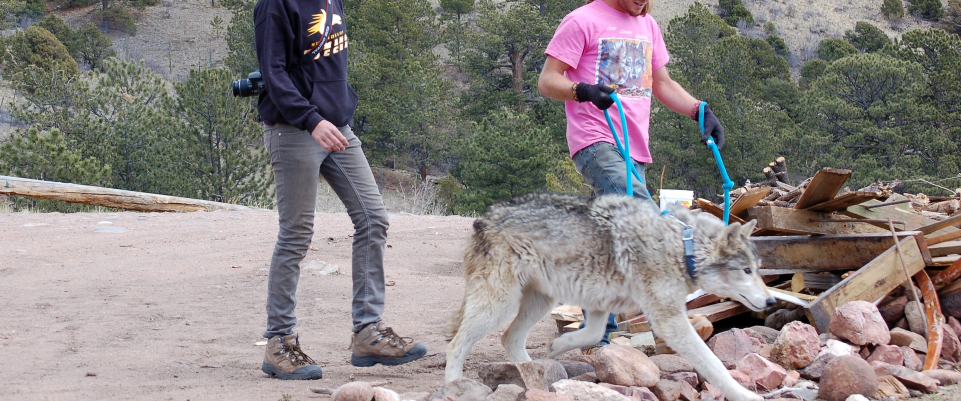 Mission Wolf: Experiment in Living