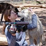 Beret wolf camera 1.JPG