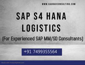 SAP Logistics.jpg