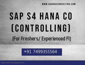 SAP CO.jpg