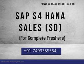 SAP Sales (SD).jpg