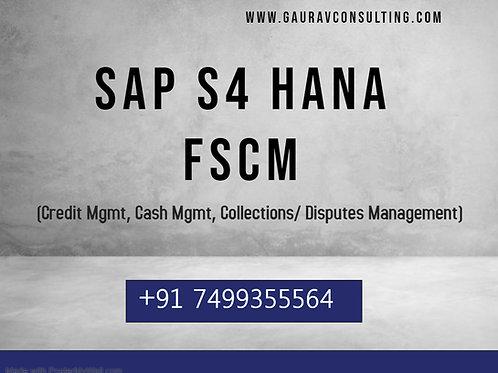 SAP S/4 HANA FSCM