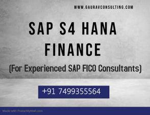 SAP FICO (EXP).jpg