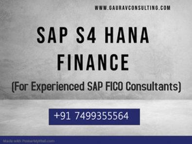 SAP S/4 HANA Finance (Exp) Videos