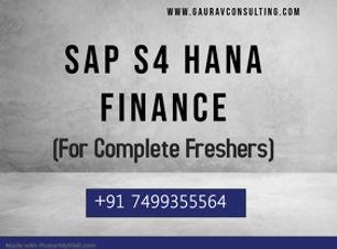 SAP FICO (fresher).jpg