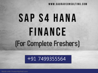 SAP S/4 HANA Finance (Beginners) Videos