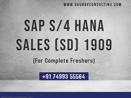 SAP S/4 HANA Sales (SD) 1909 Ongoing Batch Videos