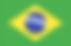 Brasil - Bandeira.png