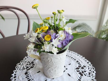 パルのお花