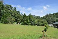 field_01.JPG