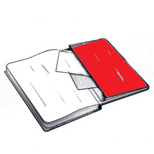 rear envelope 300 x 300