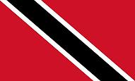 TT Flag.png