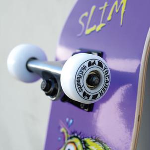 SLIM-3.jpg