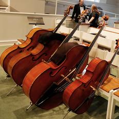 Three Bass, One Cello