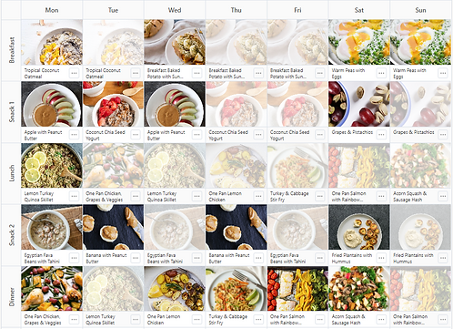 The Wellness Revelation 4-Week Meal Plans & Prep Guides