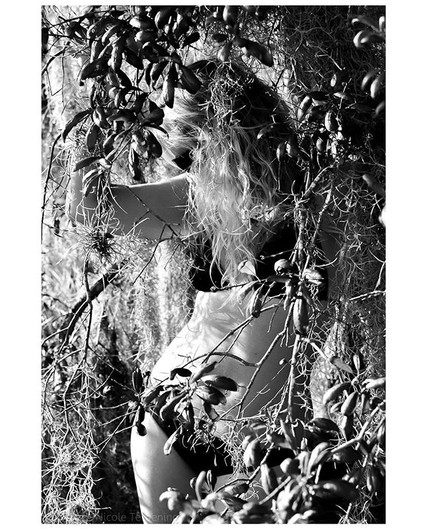 Welcome to the Jungle... _jennifer.atkin