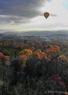 Follow That Balloon
