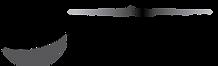 SFN Dark Background Full Logo.png