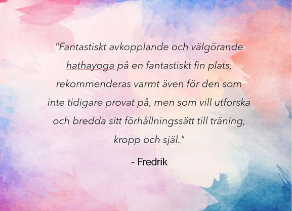 Recension_fredrik.JPG