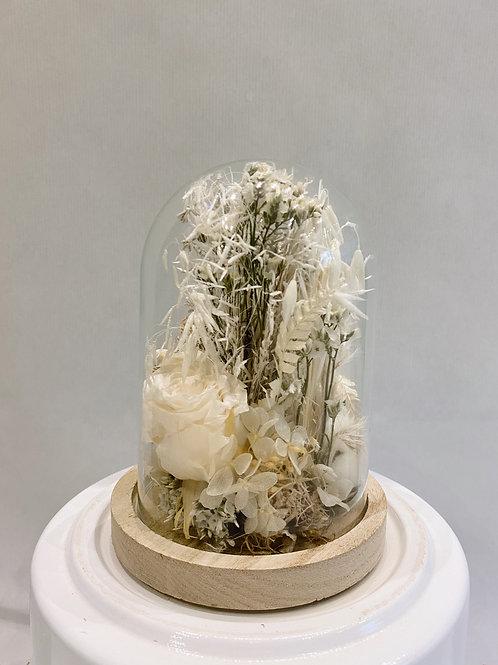 Cloche de fleur séchée blanche